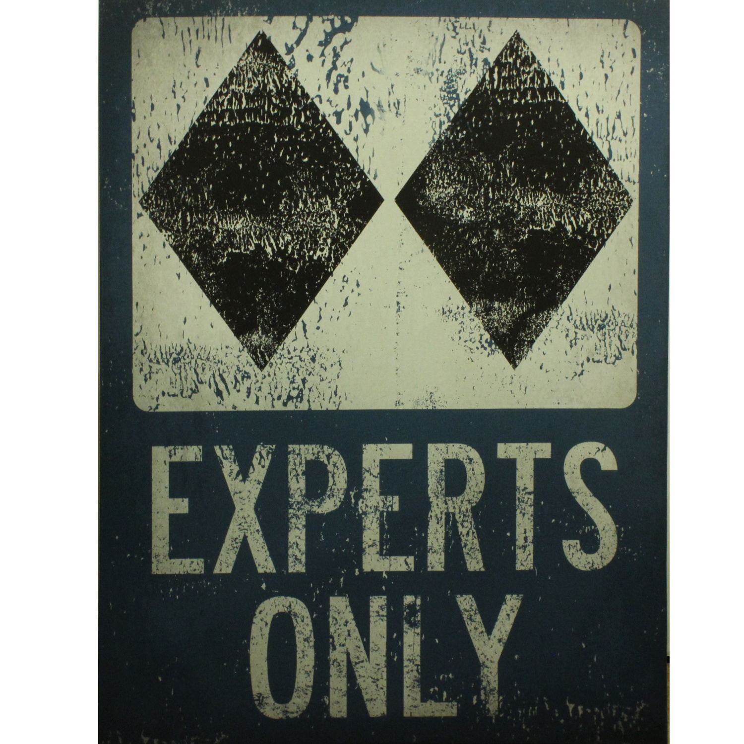 Experts Only Web
